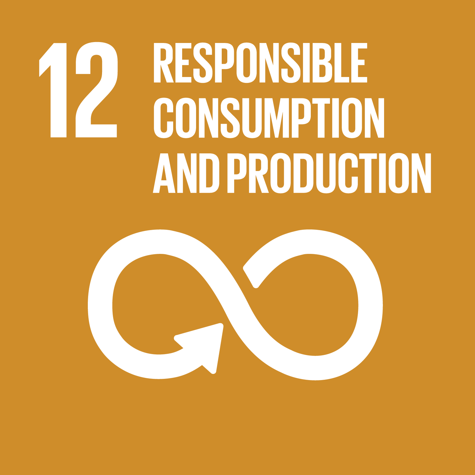 Responsible Consumption and Production - Ensure sustainable consumption and production patterns